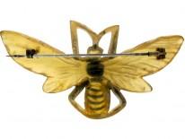 Carved Horn Art Nouveau Bug