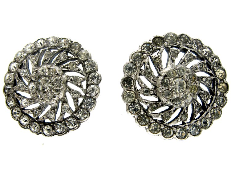 Paste Silver Earrings