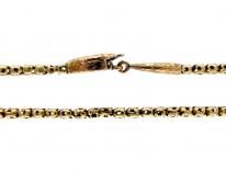 Georgian Snake Clasp Gold Chain