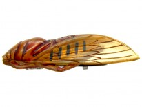 Art Nouveau Carved Horn Cicada Insect Brooch
