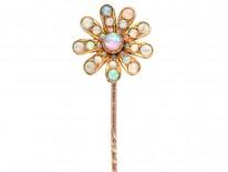 Edwardian 15ct Gold & Opal Flower Stick Pin