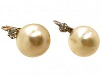 French Silver & Paste Earrings