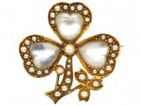 Edwardian 15ct Gold Three Leaf Clover Moonstone & Split Pearl Brooch
