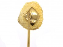 Edwardian Pearl Shell With Two Natural Pearls Tie Pin