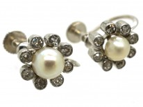 Edwardian 18ct White Gold, Natural Pearl & Diamond Daisy Earrings