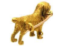 Edwardian 15ct Gold King Charles Spaniel Brooch