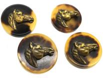 Four Horn & Brass Buttons of Horse's Heads