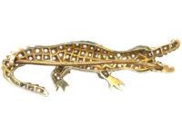 Rose Diamond & Ruby Alligator Brooch