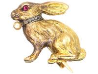 Edwardian 18ct Gold Rabbit Brooch with Rose Diamond & Pearl Collar & Ruby Eye