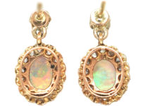 Edwardian 14ct Gold, Opal & Diamond Drop Cluster Earrings