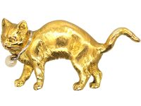 Edwardian 18ct Gold Cat Brooch with a Pearl Collar